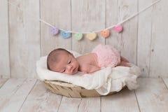 Free Newborn Baby Girl Wearing Tutu Bloomers Royalty Free Stock Image - 120858676
