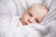 Newborn Baby Girl in White Blankets Royalty Free Stock Image
