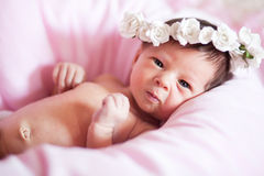 Newborn baby girl in wreath Royalty Free Stock Photo