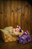 Newborn baby girl with a wreath in a wicker basket with a bouquet of purple wild flowers Stock Images