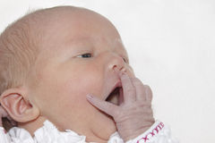 Newborn baby girl yawning Royalty Free Stock Images