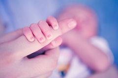 Newborn baby hand Royalty Free Stock Photos