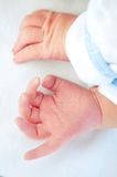 Newborn baby hands Royalty Free Stock Image