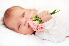 Newborn baby holding bouquet of flowers. Royalty Free Stock Image
