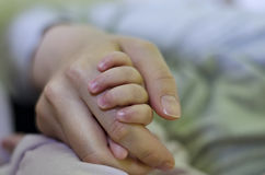 Newborn baby holding his mothers hand Stock Photography
