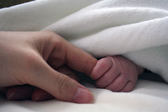 Newborn Baby Holding Mother's Finger. Cute tiny baby hand peeking out from blanket, gripping mother's finger Royalty Free Stock Photos