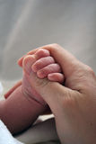 Newborn Baby Holding Mother's Finger. Cute tiny baby hand peeking out from blanket, gripping mother's finger Stock Images