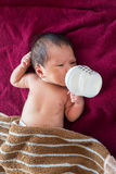 Newborn baby infant eating milk from bottle. Royalty Free Stock Photography