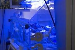 Newborn baby inside incubator Royalty Free Stock Photo