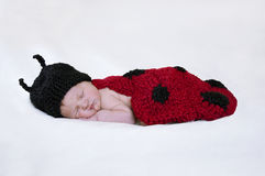Newborn baby with ladybug knit hat and bodice. Sleeping baby with knitted ladybug hat and red with black spotted bodice royalty free stock image
