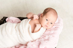Newborn baby laying in the basket Royalty Free Stock Photo