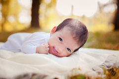 Newborn baby laying on the grass. In the autumn park Royalty Free Stock Photo