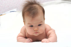 Newborn baby laying on the stomach Royalty Free Stock Photo