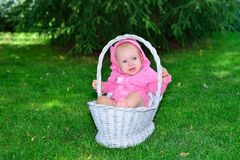 A newborn baby lies in a basket on the lawn royalty free stock images
