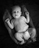Newborn baby lying in a basket in monochrome Stock Photography
