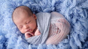 Newborn baby lying in blue fur wrapped in diaper stock video footage