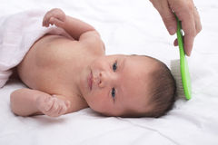 Newborn baby with mother combing Royalty Free Stock Photo