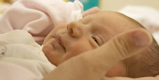 Newborn baby in mothers armful. Newborn baby in mothers' armful lying and watching Royalty Free Stock Photography