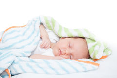 Newborn baby one month age Royalty Free Stock Photos