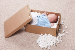 Newborn baby in open post box Stock Photography
