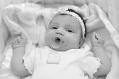 Newborn baby with a pacifier Royalty Free Stock Photography
