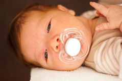 Newborn baby with pacifier Stock Images