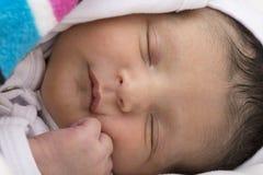 Newborn baby peacefully sleeping Stock Photography