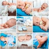 Newborn baby photos Stock Photos