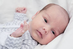 Newborn baby quiet looking, dark eyes Stock Photo