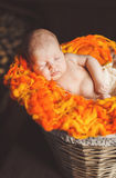 Newborn baby resting Stock Image