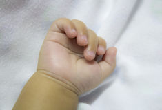 Newborn baby's hand Stock Photography