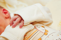Newborn baby's hand Royalty Free Stock Images