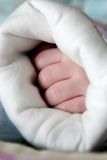 Newborn baby's hands Stock Photos