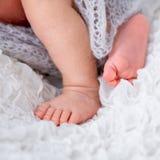Newborn baby's legs Stock Photos