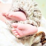 Newborn baby's legs Stock Photography