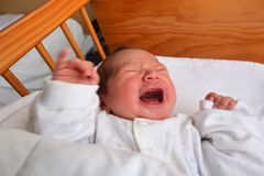 Newborn baby screaming Stock Images