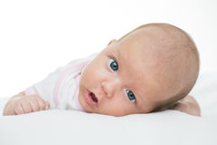 Newborn baby seven weeks age Royalty Free Stock Photos