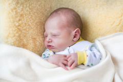 Newborn baby on sheepskin under knitted blanket Stock Image