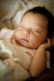 Newborn baby sleeping. Newborn baby wrapped in blanket sleeping on her back Royalty Free Stock Photo