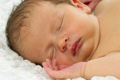 Newborn Baby Sleeping. Royalty Free Stock Photo