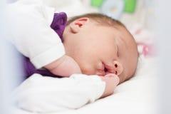 Newborn baby sleeping Royalty Free Stock Photo