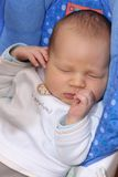 Newborn baby sleeping in baby swing Royalty Free Stock Images