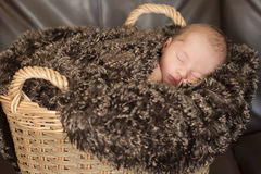 Newborn baby sleeping in basket Royalty Free Stock Photo