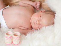 Newborn baby are sleeping in a basket Stock Image