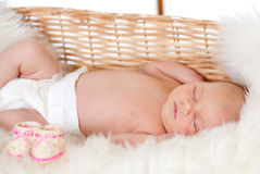 Newborn baby sleeping in basket Stock Photography