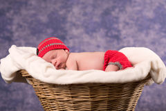 Newborn baby sleeping in a basket. Royalty Free Stock Photos