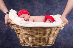 Newborn baby sleeping in basket held by parents. Stock Photos