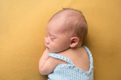 Newborn Baby Sleeping on Blanket Royalty Free Stock Image