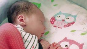 Newborn baby sleeping stock video