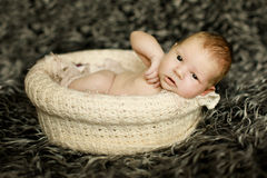 Newborn baby sleeping on fur in the basket Stock Photography